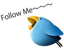 1272710986_twitter_bird.jpg