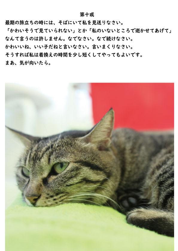 http://www.b2c.jp/blog/img/%E5%8D%81%E6%88%9210.jpg
