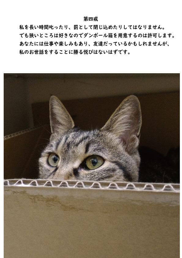 http://www.b2c.jp/blog/img/%E5%8D%81%E6%88%924.jpg